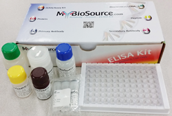 Mouse Lactoperoxidase (LPO) ELISA Kit 小鼠乳过氧化物酶试剂盒