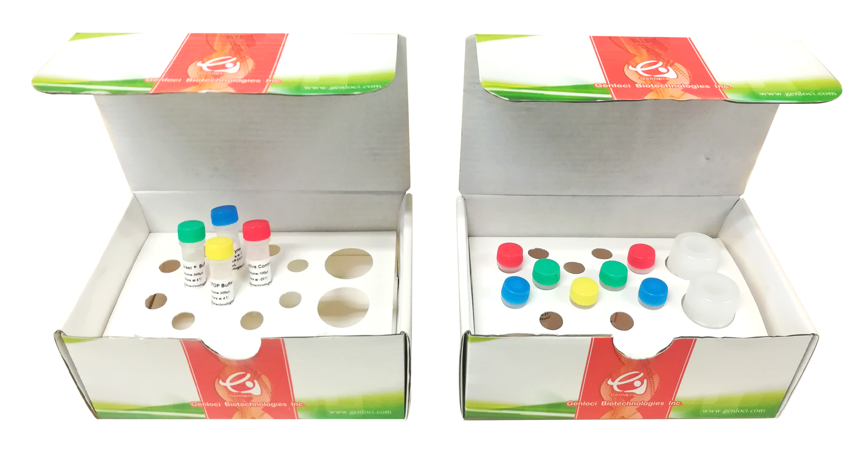 Cruiser® 基因敲除检测试剂盒(100rxns)