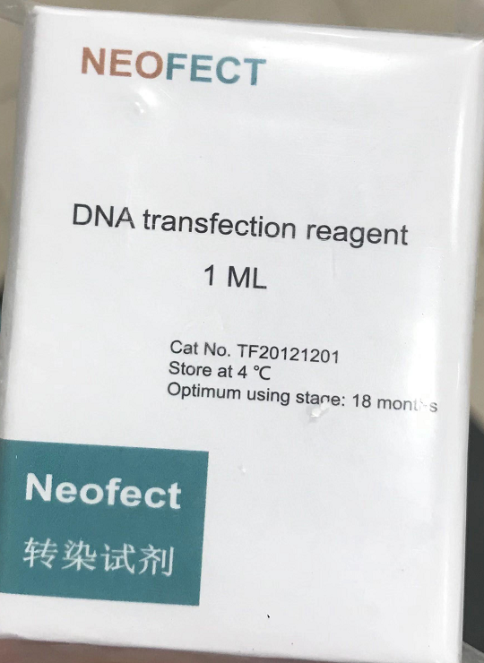Neofect™ DNA transfection reagent