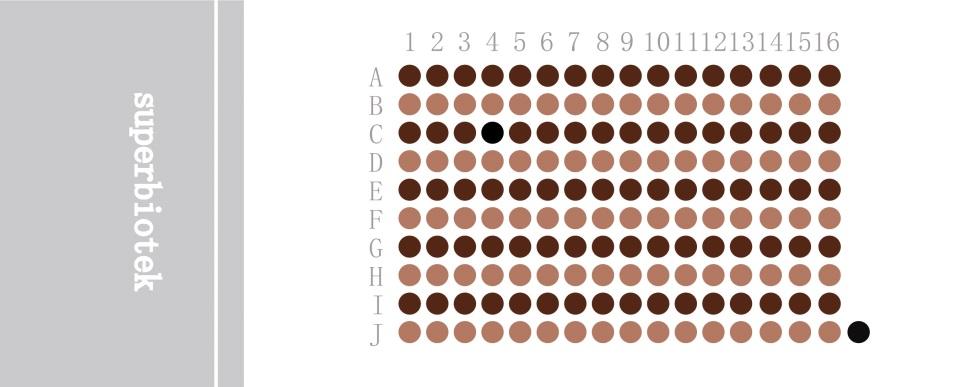 三阴性乳腺癌组织芯片BRC1601