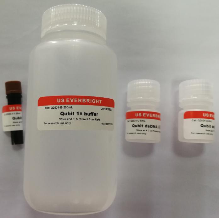 Qubit X-Green II dsDNA Quantitation Kit