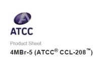 ATCC 细胞 4MBr-5 Lung Rhesus Monkey (Macaca mulatta)