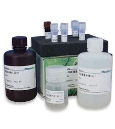 SDS-PAGE凝胶快速制备试剂盒-10T