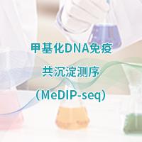 甲基化DNA免疫共沉淀测序(MeDIP-Seq)