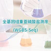 全基因组甲基化测序(WGBS)
