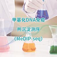 甲基化DNA免疫共沉淀測序(MeDIP-Seq)