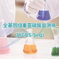 全基因組甲基化測序(WGBS)