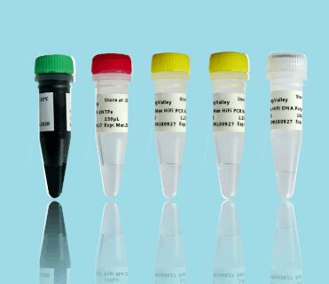 溶藻弧菌核酸检测试剂盒(PCR-荧光探针法)