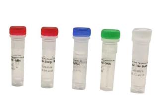 诺如病毒GⅠ型RNA核酸检测试剂盒(恒温荧光法)