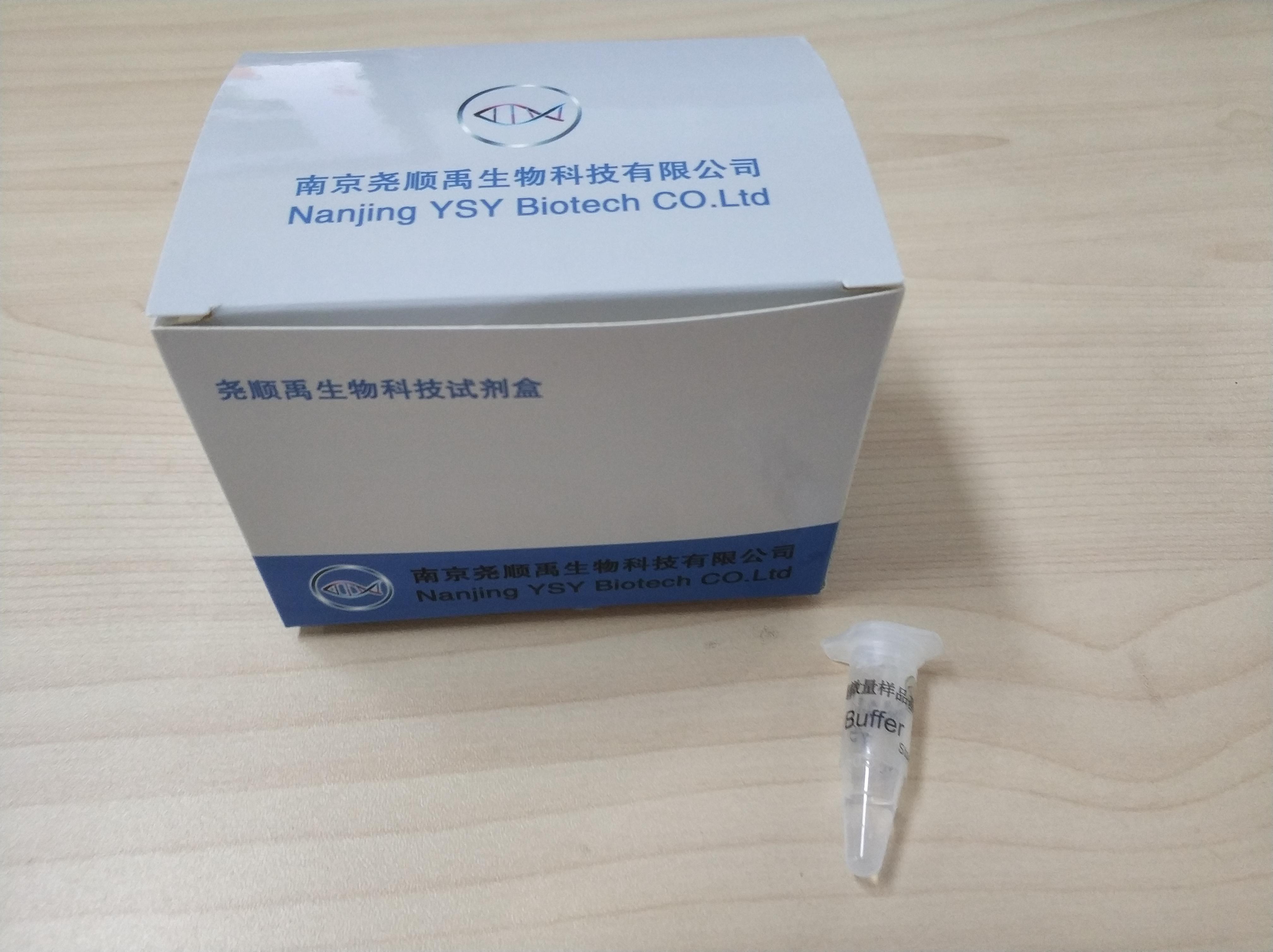 斑马鱼原位杂交试剂盒