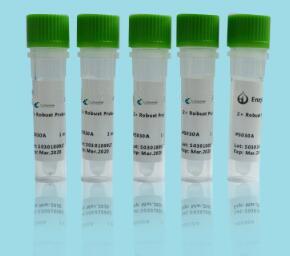 BAR基因核酸检测试剂盒(PCR-荧光探针法)