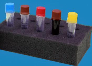 流行性造血器官坏死病病毒(EHNV)核酸检测试剂盒(PCR-荧光探针法)