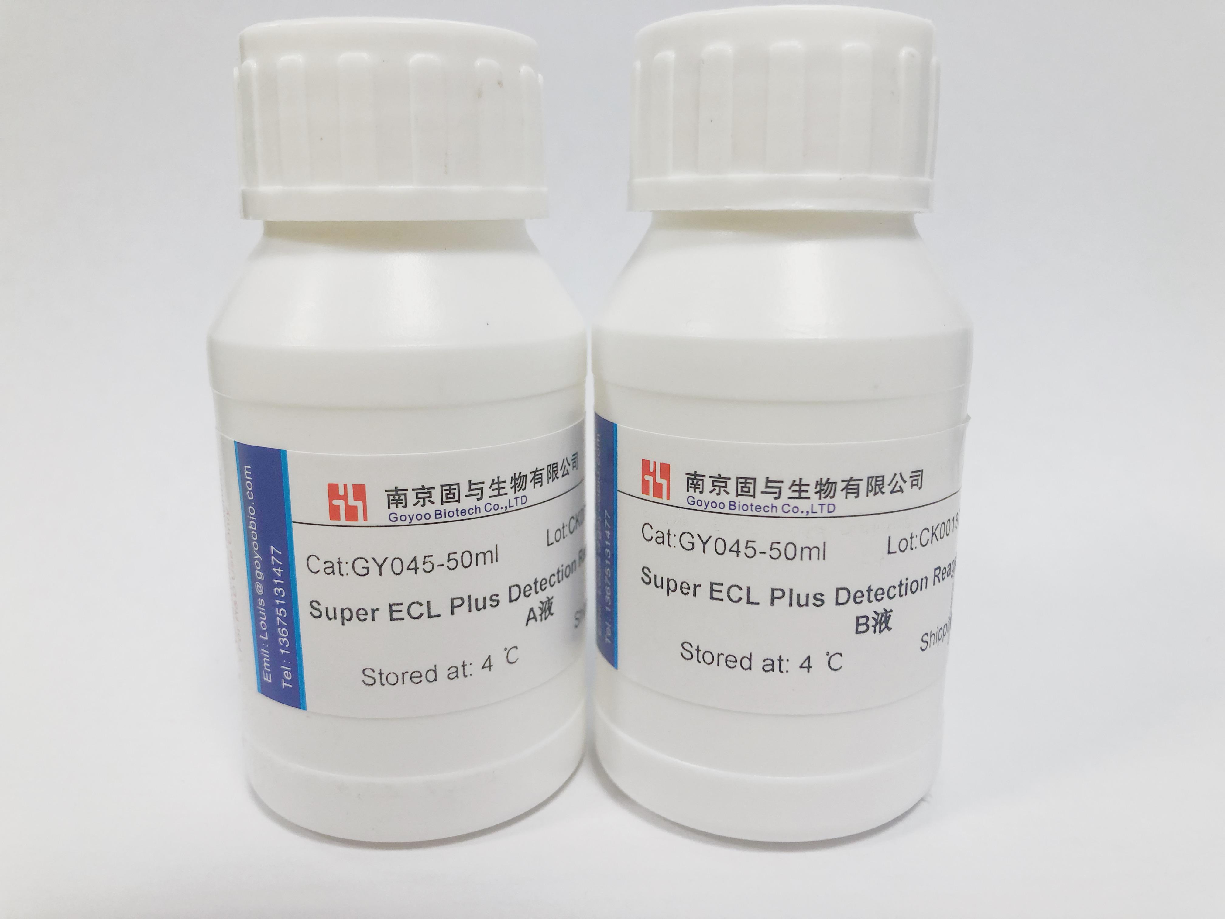 Super ECL Plus超敏发光液
