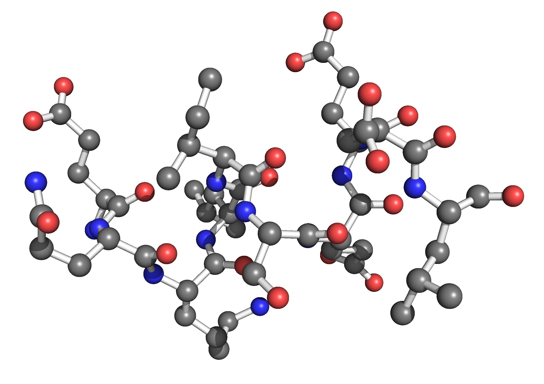合成98%以上纯度的多肽