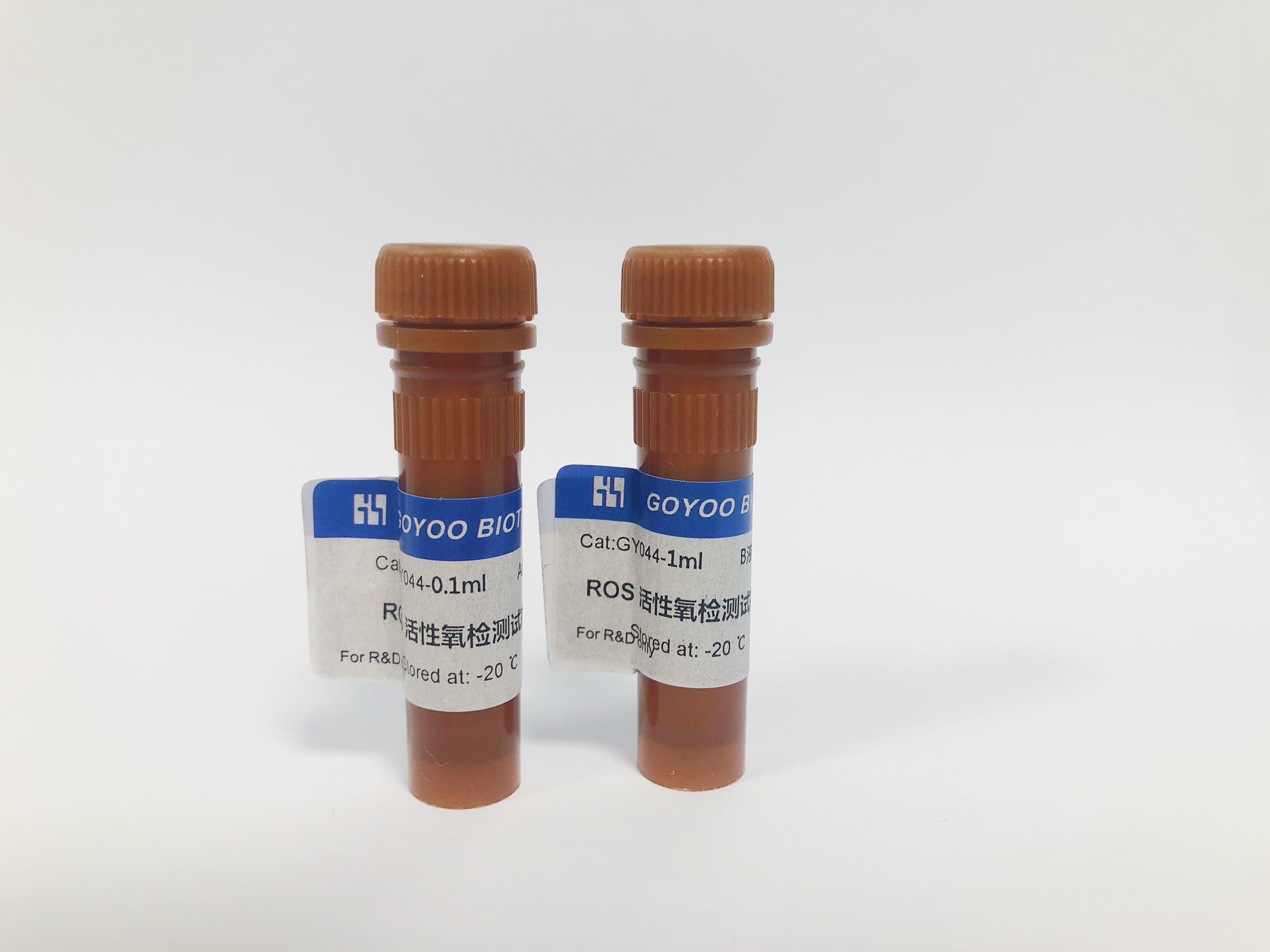 活性氧检测试剂盒