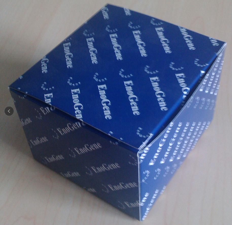EnoGeneCell Counting Kit-8 (CCK-8)检测试剂盒