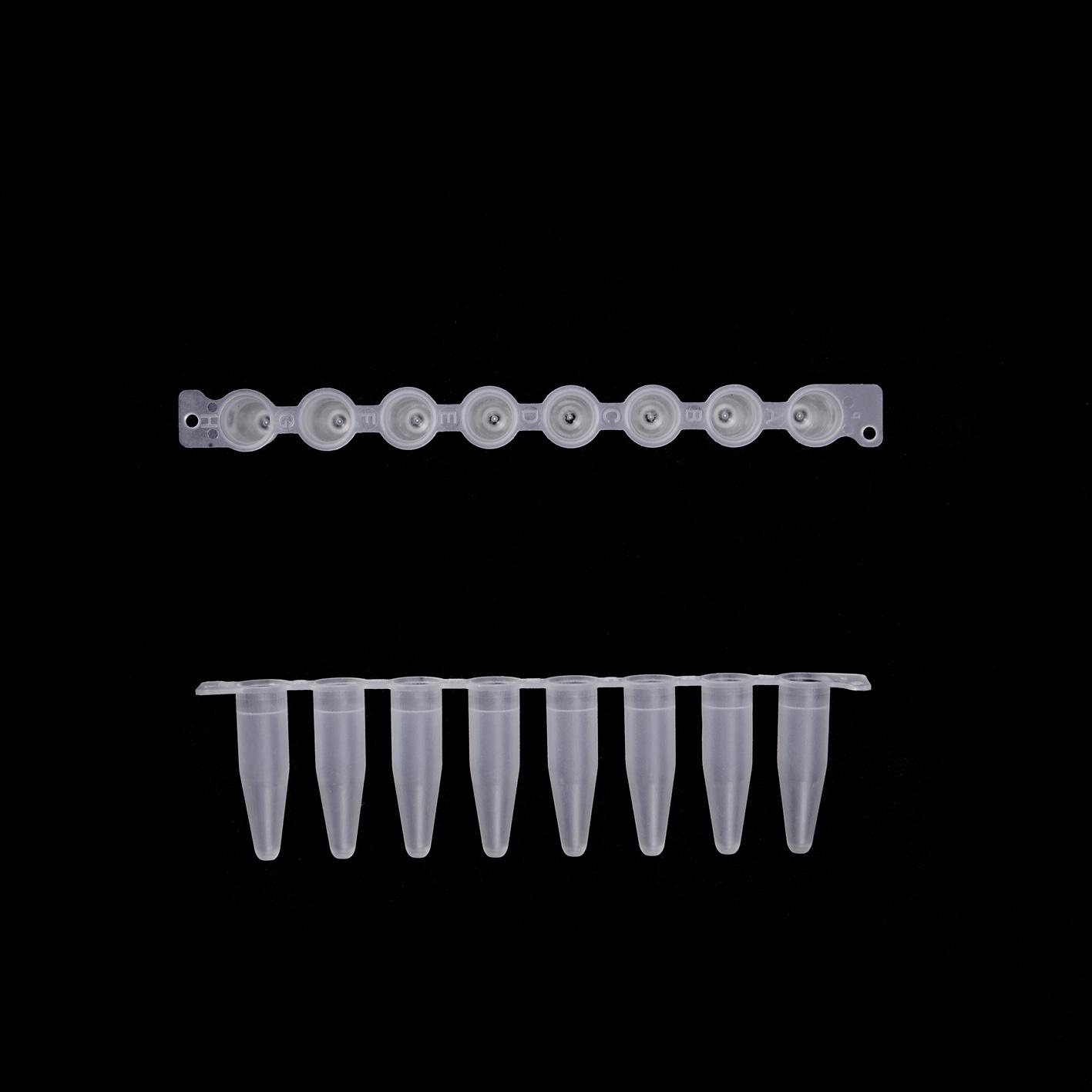 EU 0.2 ml 薄壁八联管(磨砂,普通连接)