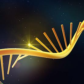 meRIP-seq(m6A)免疫共沉淀测序技术重磅升级