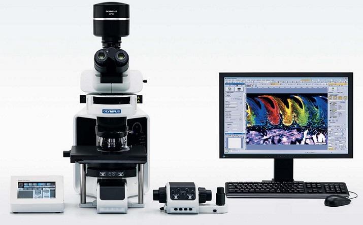 奥林巴斯荧光显微镜BX53