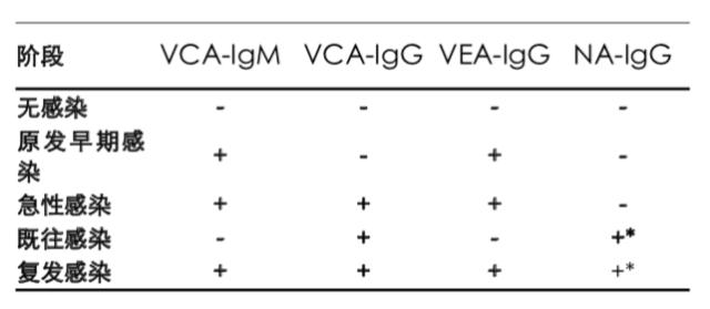 EBV的四个感染阶段.png