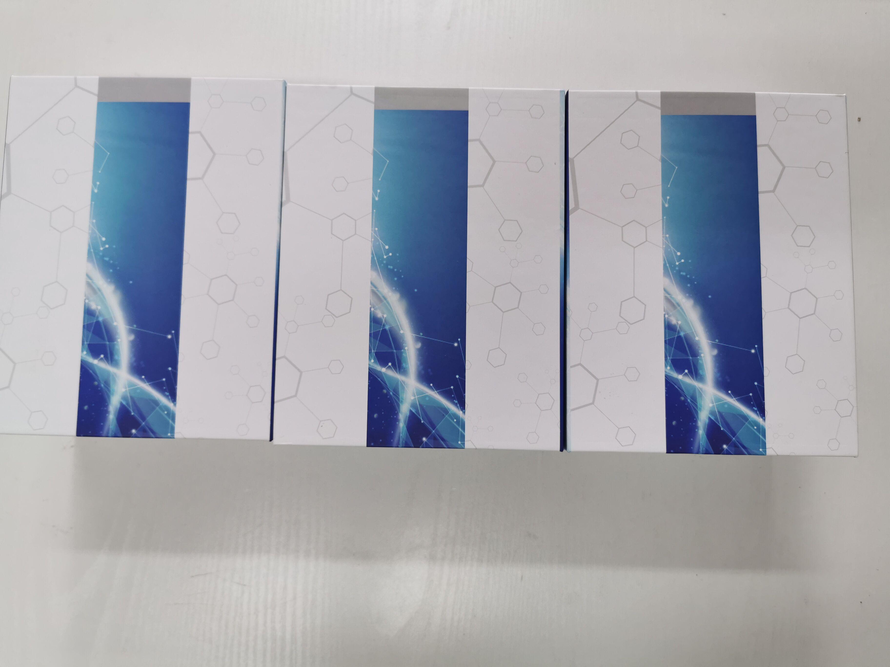 磁珠法组织基因组DNA提取试剂盒