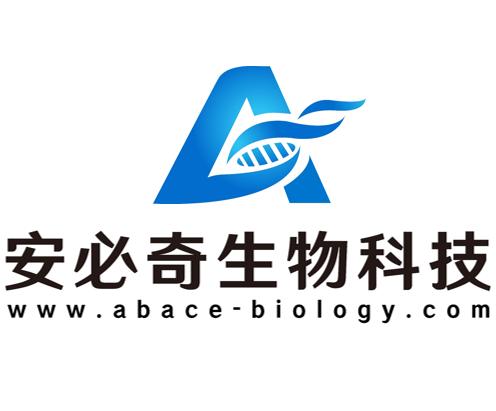 微生物检测和鉴定服务(FISH)