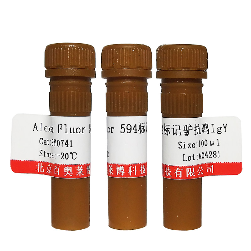 FITC标记小鼠抗乙肝表面抗原抗体(FITC标记一抗)