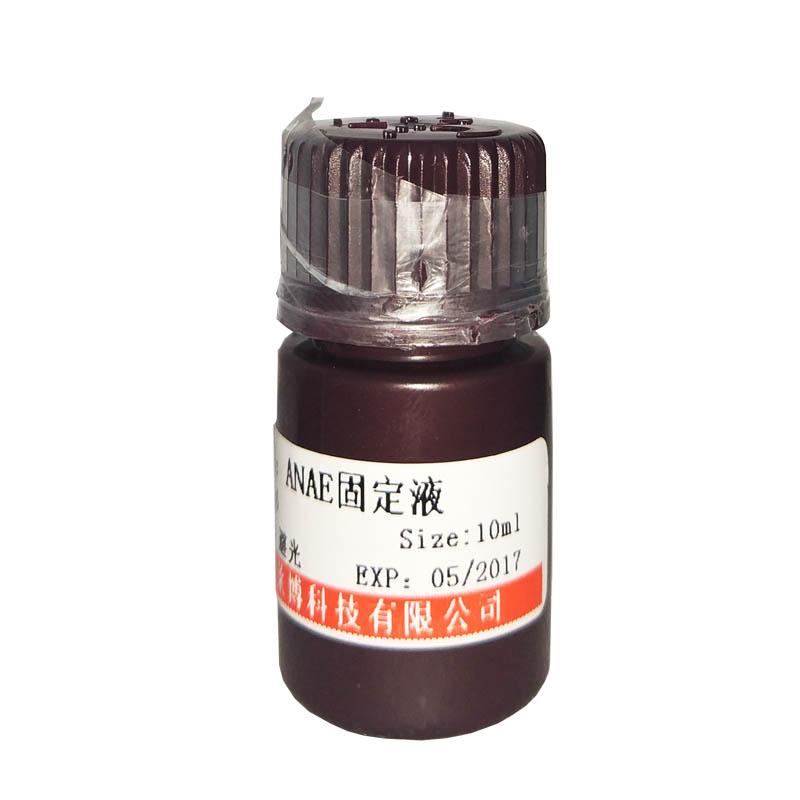 HEPES溶液(1mol/L,Free Acid)