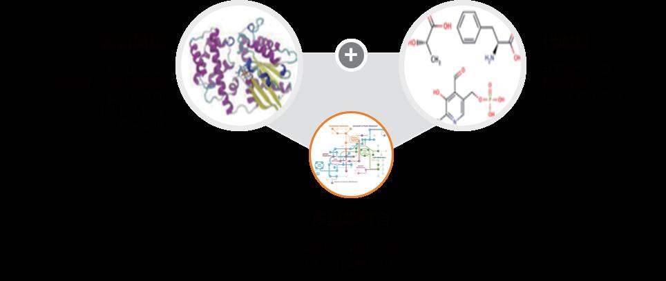 蛋白组学技术服务