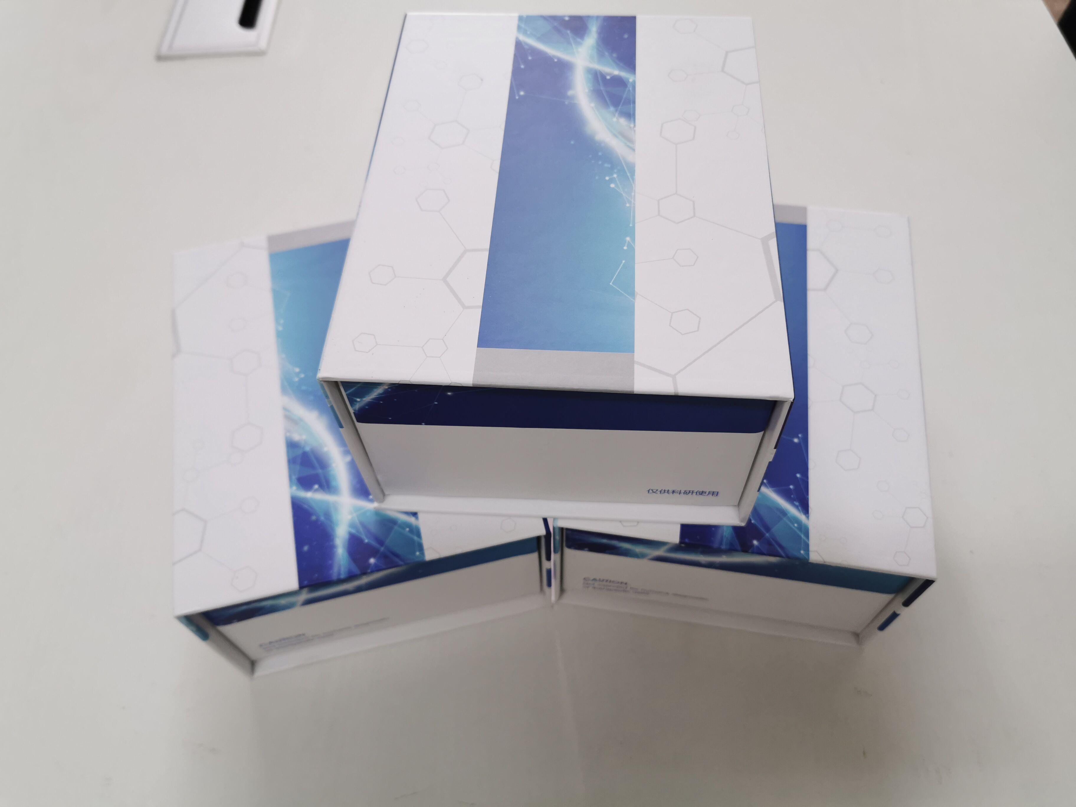 磁珠法通用型DNA纯化试剂盒