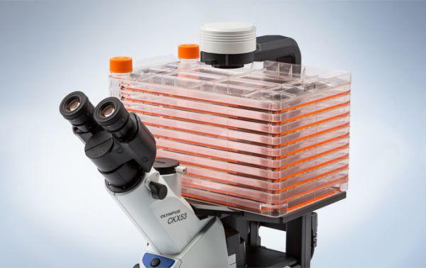 山东CKX53奥林巴斯倒置显微镜