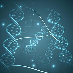 基因克隆与定点突变