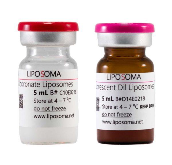 Clodronate Liposomes & Fluorescent Dil Liposomes