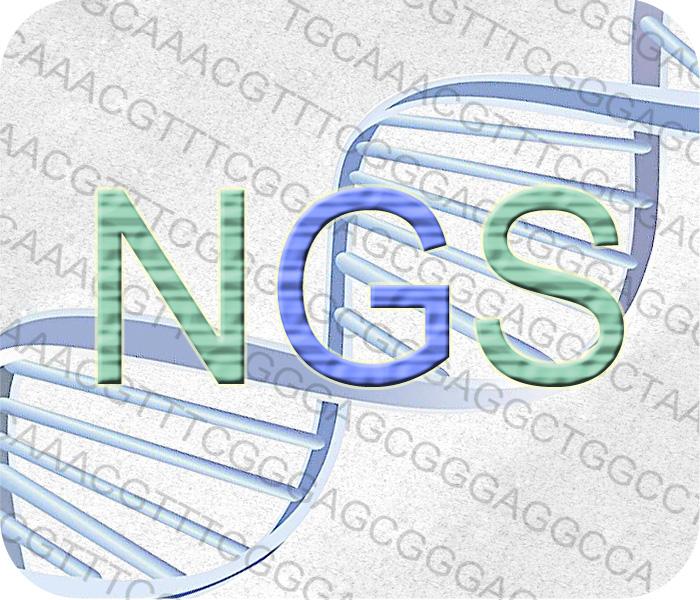 转录组测序//RNA seq//16s 扩增子测序//全基因组测序//全外显子组测序//单细胞测序//高通量测序//NGS