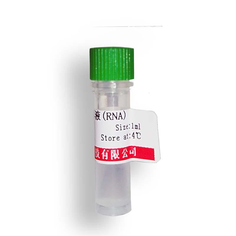 DTT 二硫苏糖醇(3483-12-3)