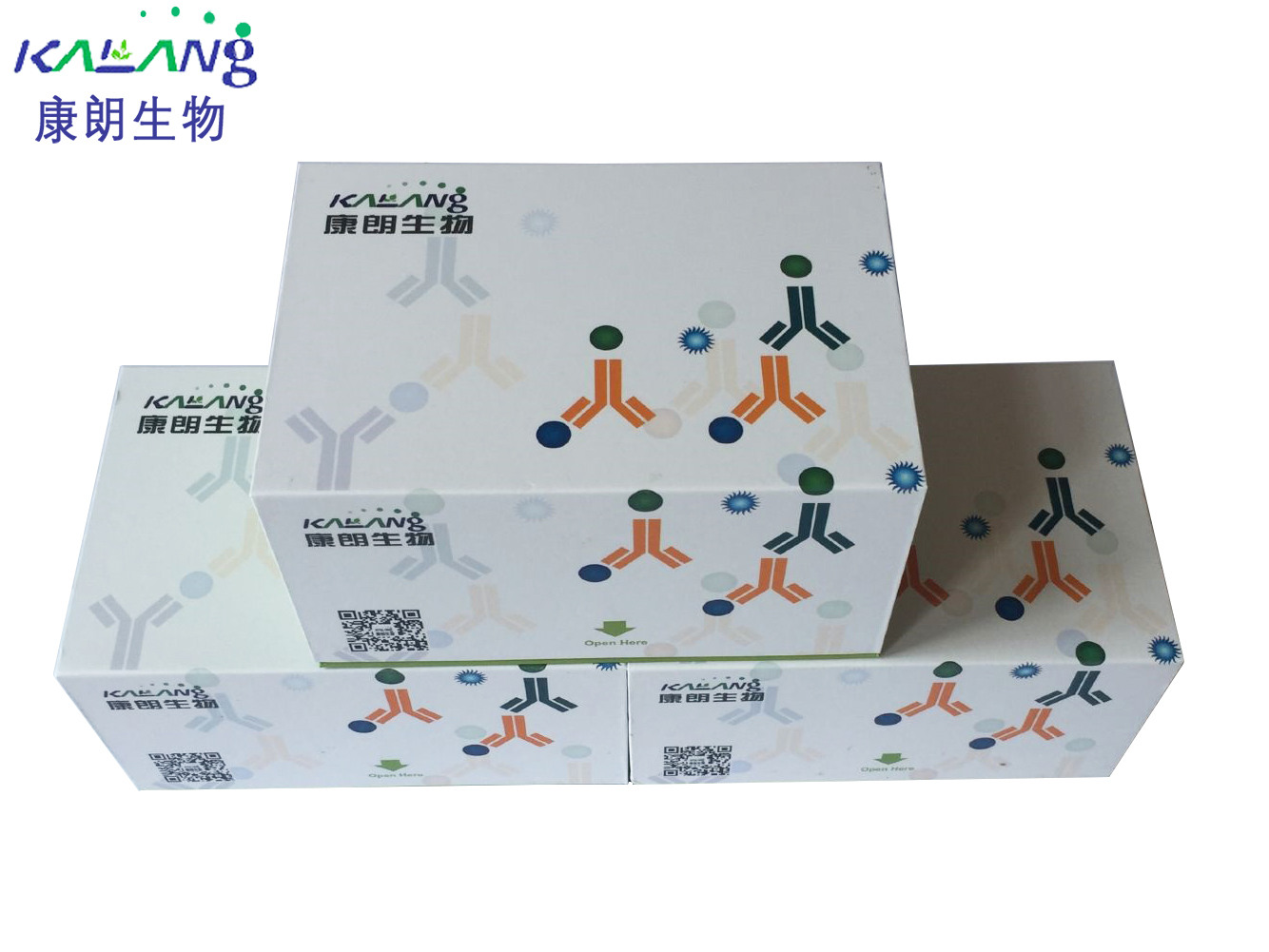 H2S含量测试盒(可见分光光度法)