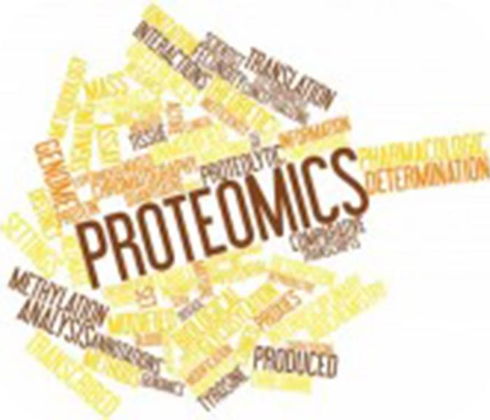 蛋白质组学技术服务