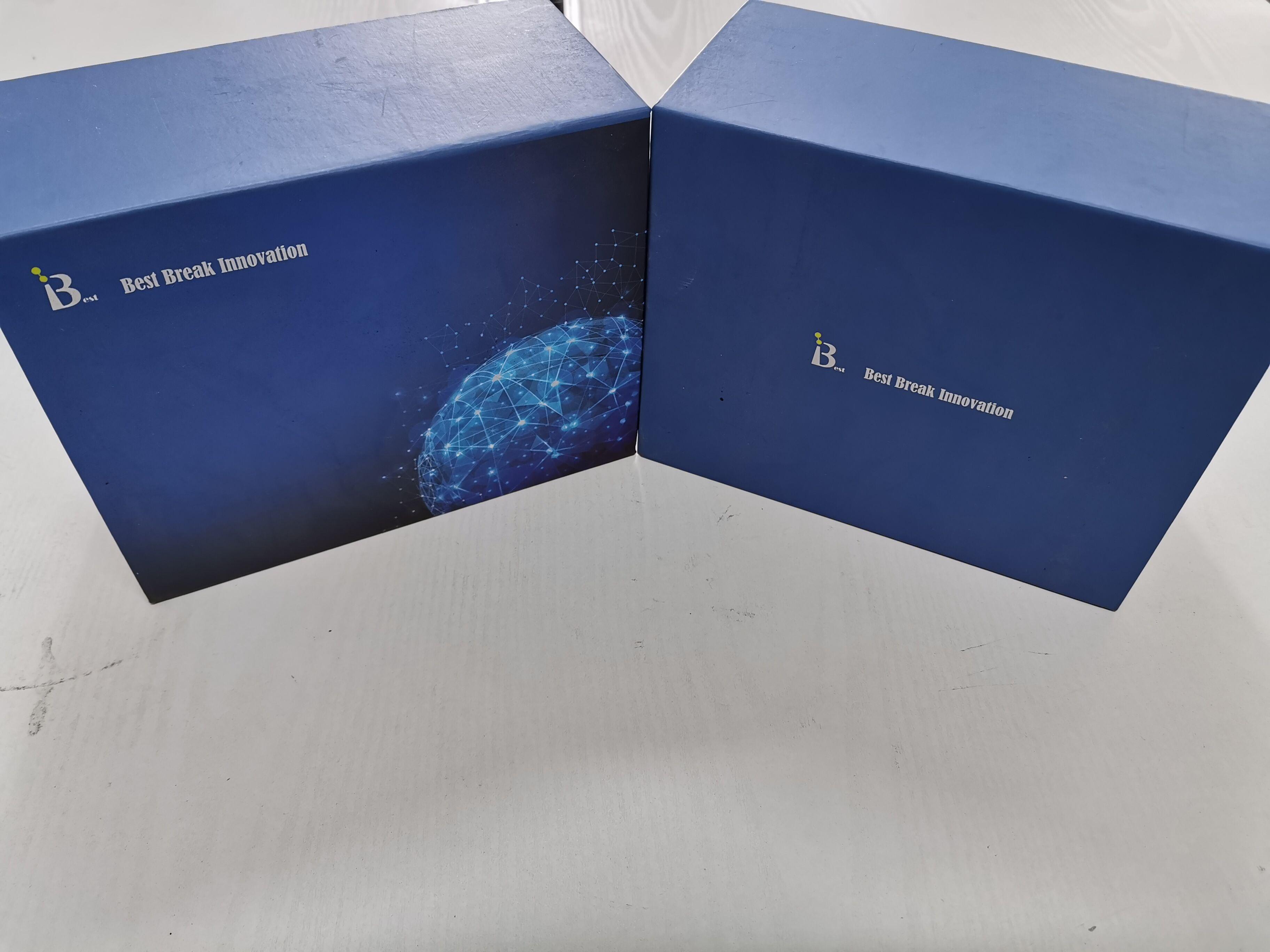 大鼠骨成型蛋白受体Ⅱ酶联免疫试剂盒