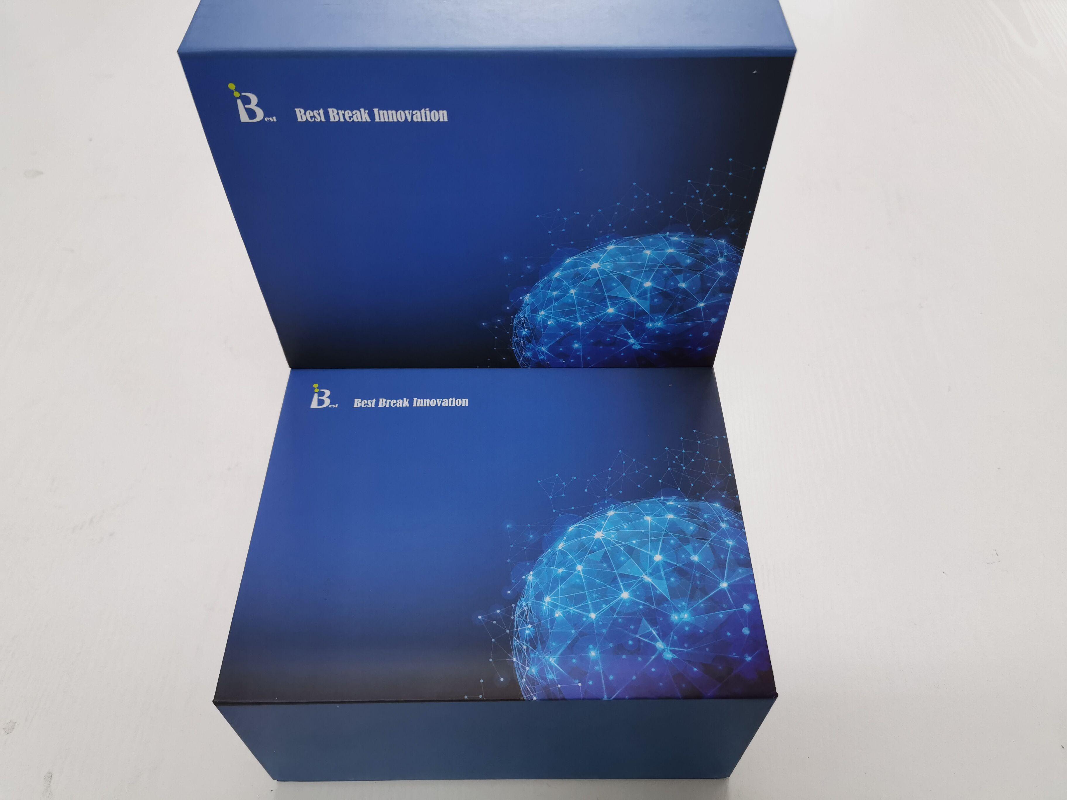 猪B细胞淋巴瘤因子-2酶联免疫试剂盒