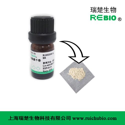 雞胰腺干粉 雞胰腺凍干粉 (含γ-谷氨酰基水解酶)