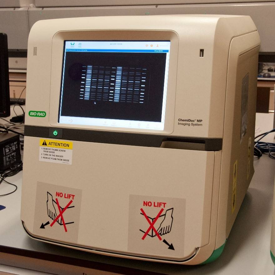 bio-rad伯樂ChemiDoc MP化學發光凝膠成像系統/全能型成像儀