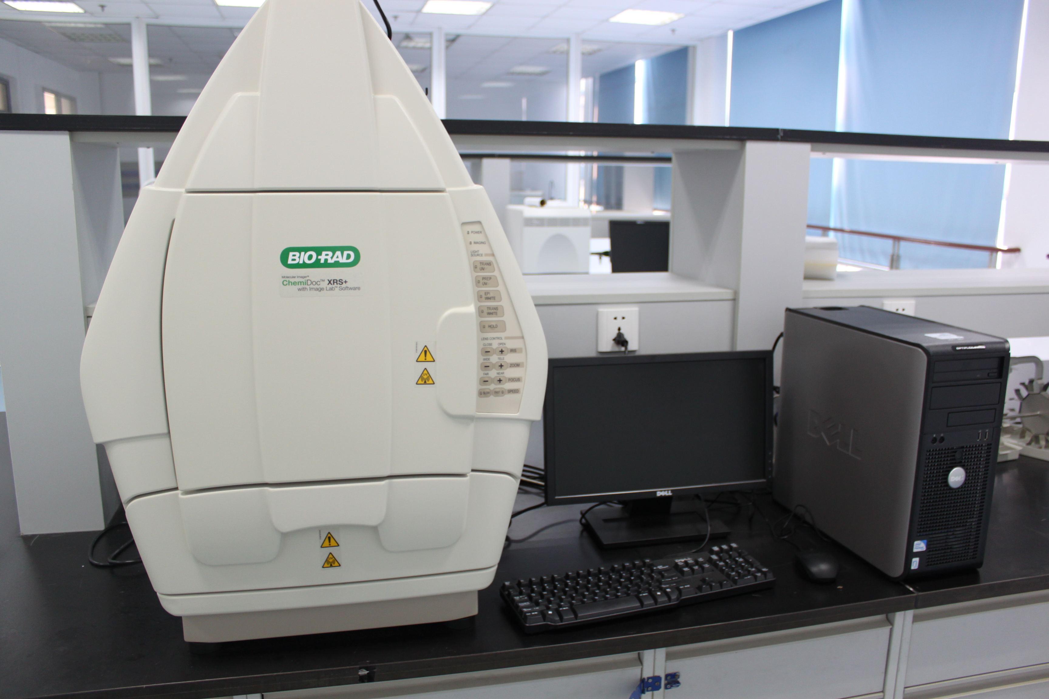 bio-rad伯樂ChemiDoc XRS+化學發光凝膠成像系統