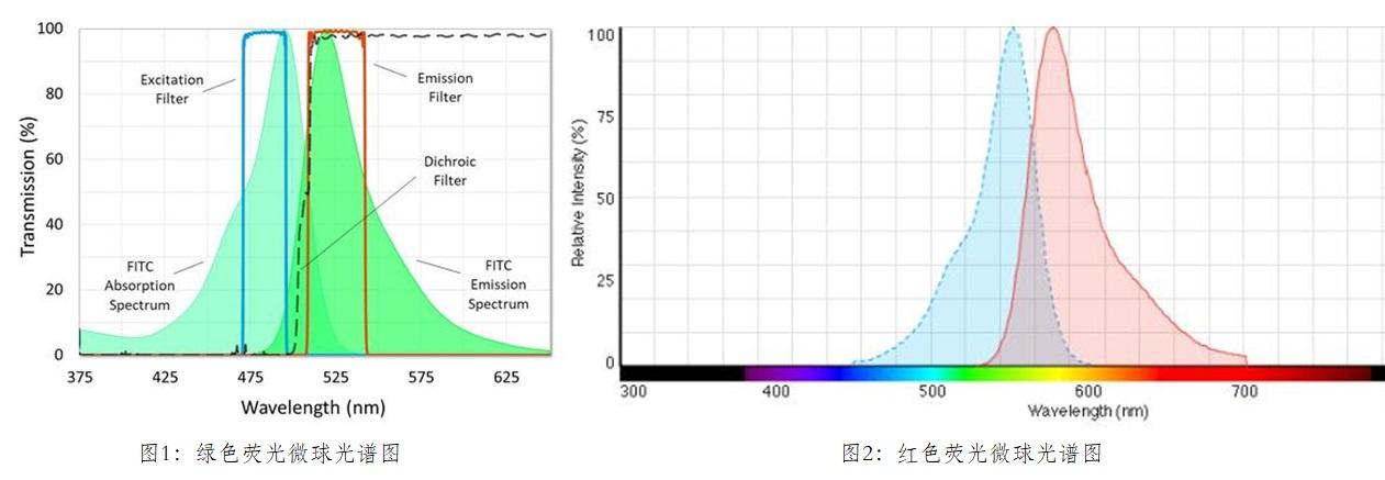 红色荧光微球 RF01