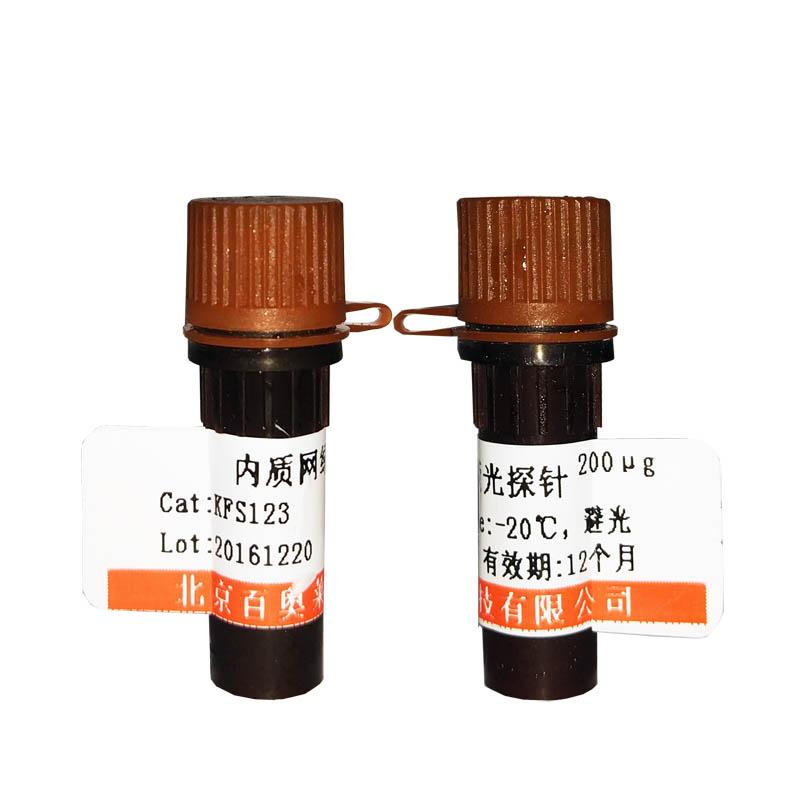 防脱片玻片(APES和多聚赖氨酸双重处理)