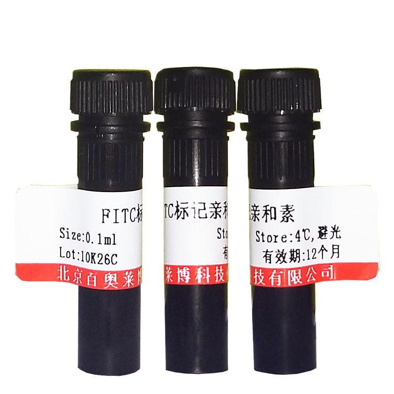 多聚赖氨酸 Poly-L-lysine北京现货