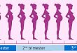妊娠期腎病的診治