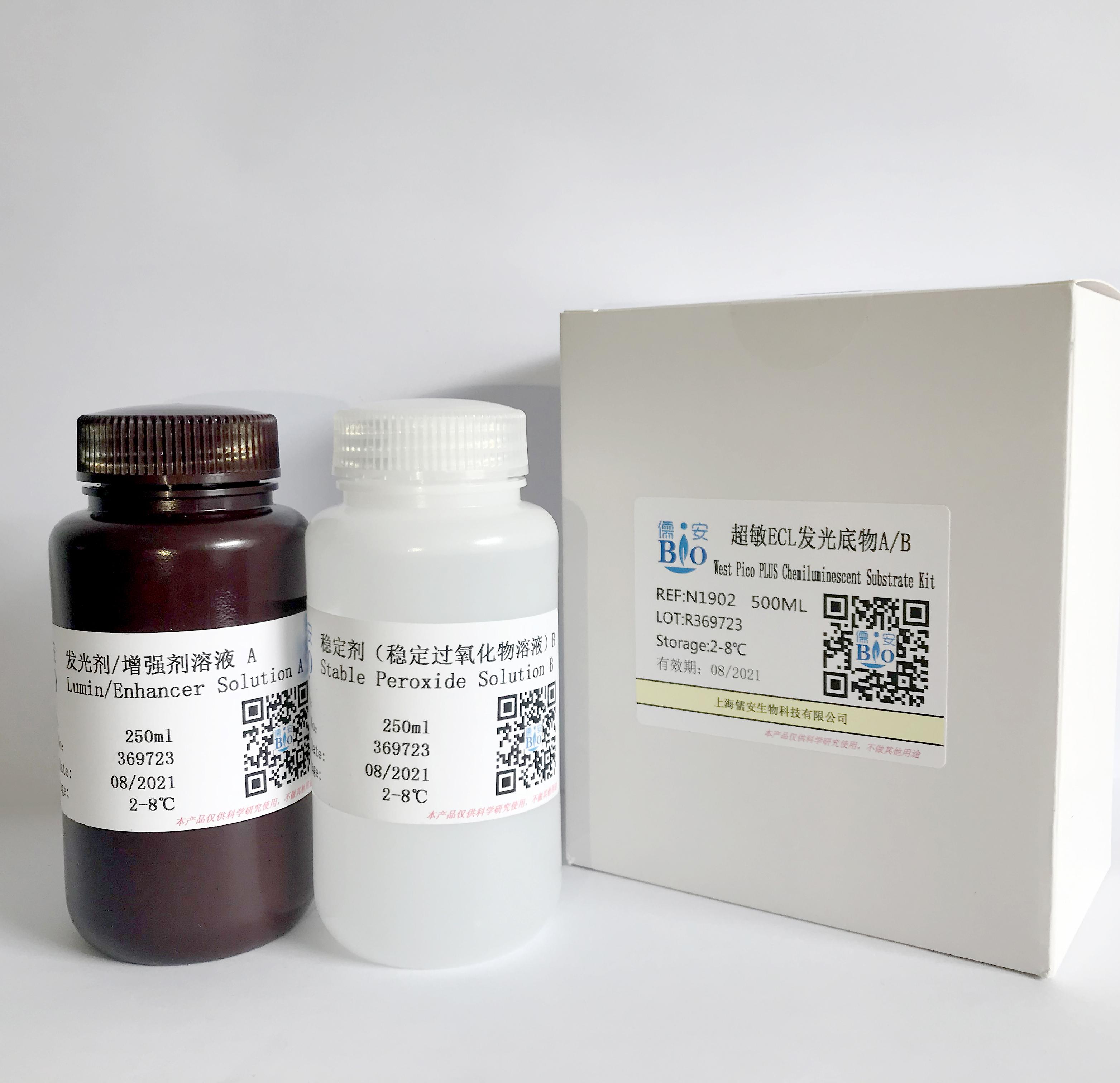 ECL发光底物(试剂盒)