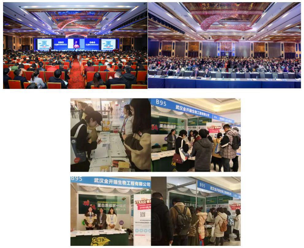 2019中国肿瘤标志物学术大会
