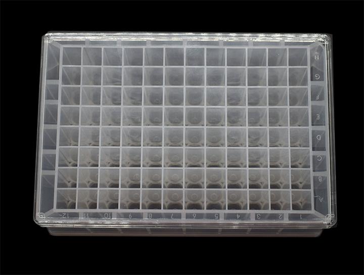 96孔深孔板(U形底, 1.8ml/孔)