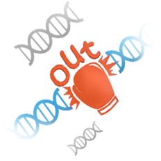 Cas9细胞基因敲除 | WB保证 | 500成功案例
